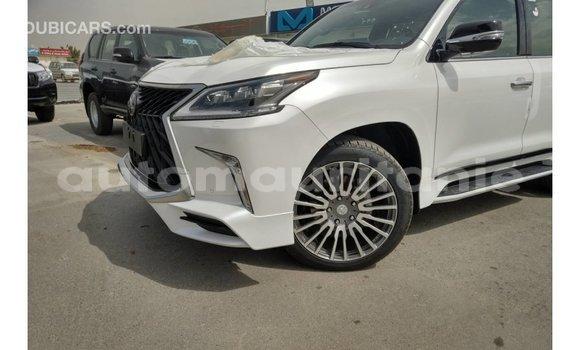 Acheter Importé Voiture Lexus LX Blanc à Import - Dubai, Adrar
