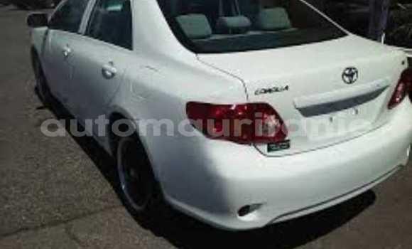 Acheter Occasion Voiture Toyota Corolla Blanc à Nouakchott, Nouakchott Ouest
