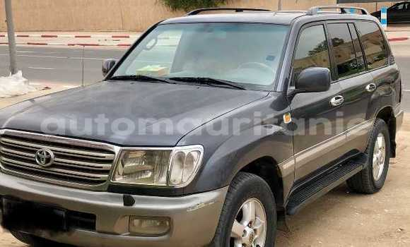 Buy Used Toyota Land Cruiser Black Car in Nouakchott in West Nouakchott