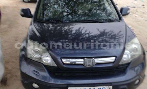 Buy Used Honda CR–V Blue Car in Nouakchott in West Nouakchott