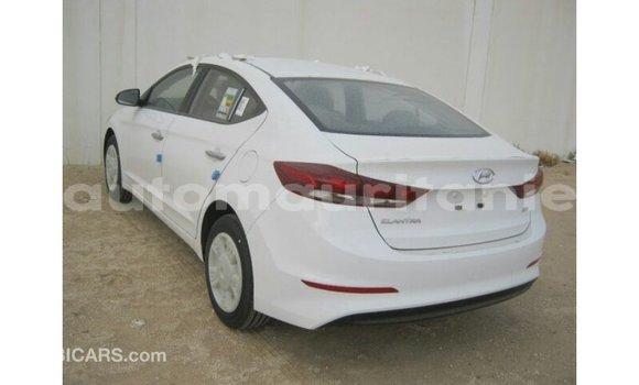 Acheter Importé Voiture Hyundai Elantra Blanc à Import - Dubai, Adrar