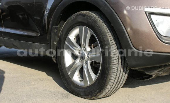 Acheter Importé Voiture Kia Sportage Marron à Import - Dubai, Adrar