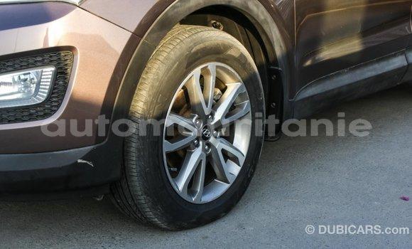 Acheter Importé Voiture Hyundai Santa Fe Marron à Import - Dubai, Adrar