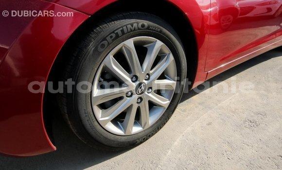 Acheter Importé Voiture Hyundai Elantra Rouge à Import - Dubai, Adrar