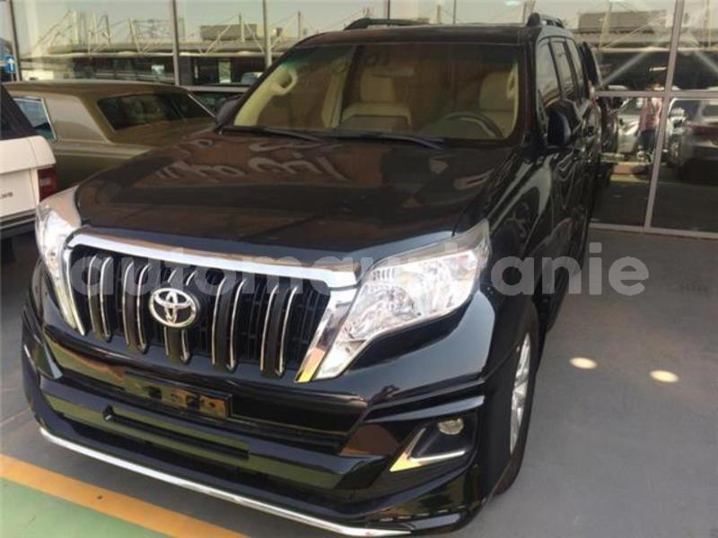 Big with watermark prado3
