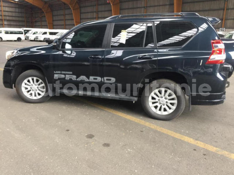 Big with watermark prado4