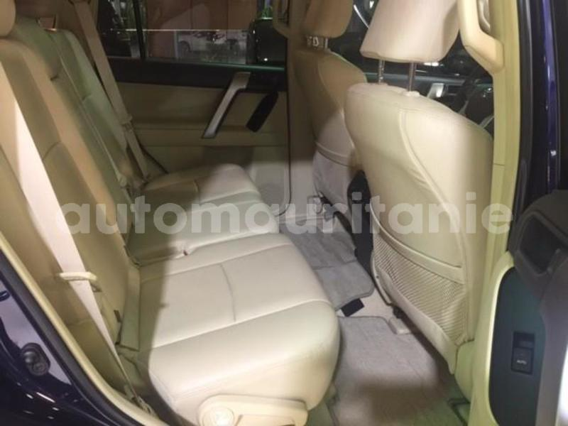 Big with watermark prado8