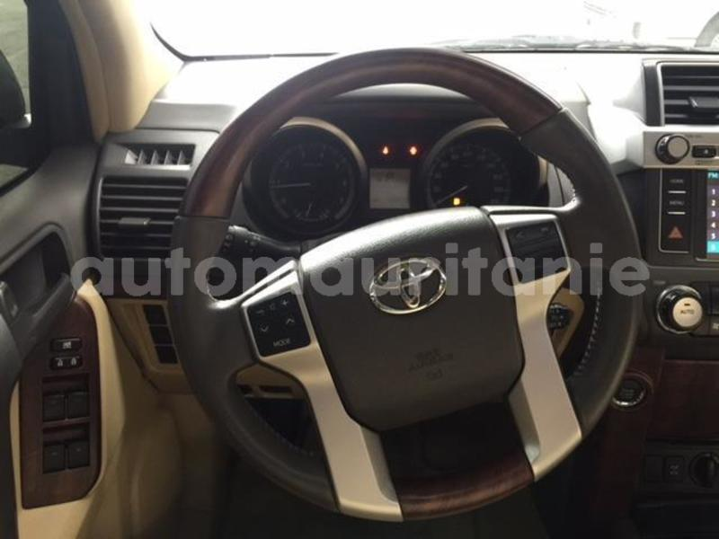 Big with watermark prado10
