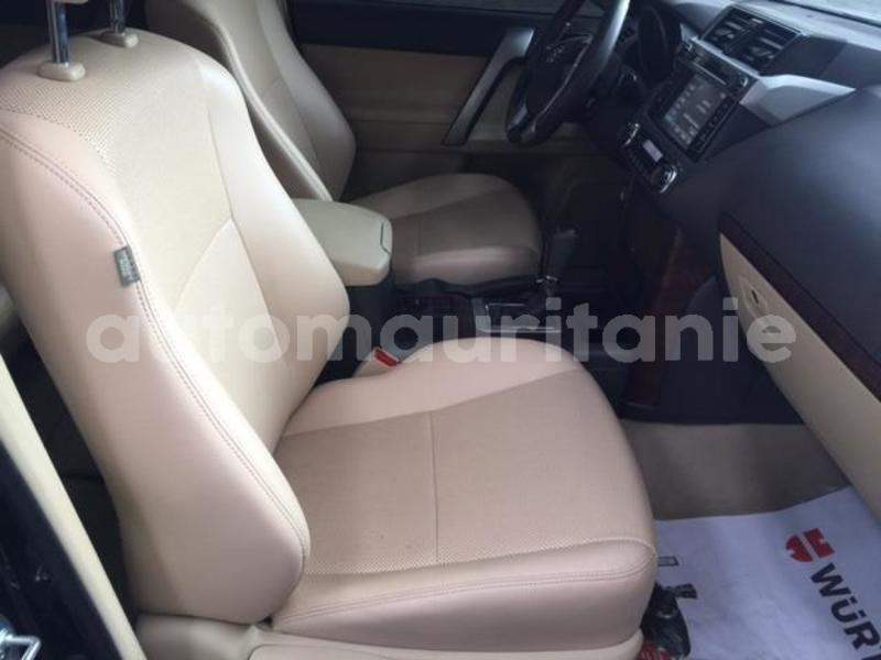 Big with watermark prado11