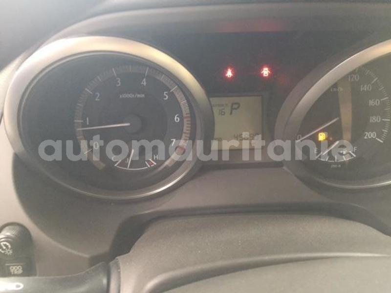 Big with watermark prado13