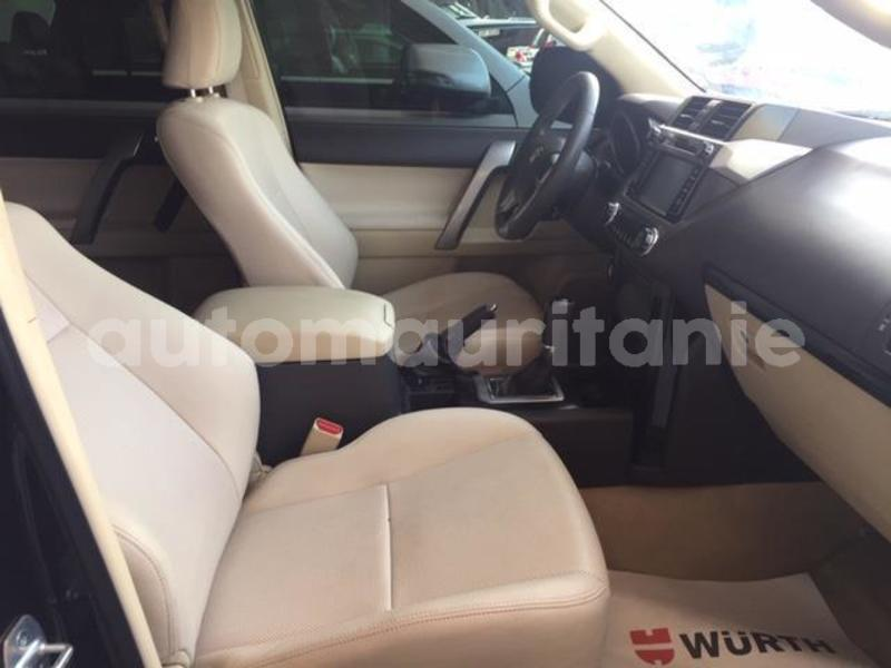 Big with watermark prado14