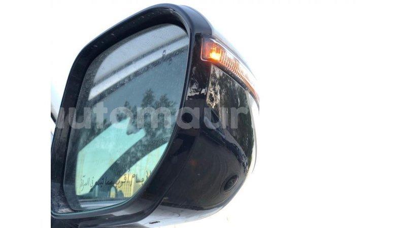 Big with watermark kia carens adrar import dubai 4068
