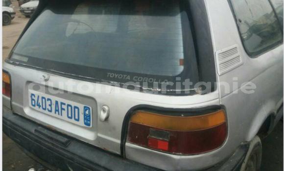 Acheter Occasion Voiture Toyota Corolla Gris à Nouakchott au Nouakchott Ouest