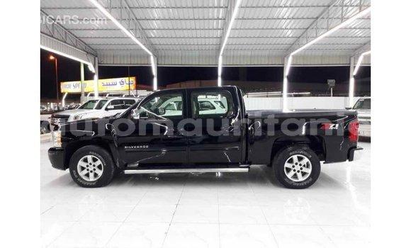 Acheter Importé Voiture Chevrolet Silverado Noir à Import - Dubai, Adrar