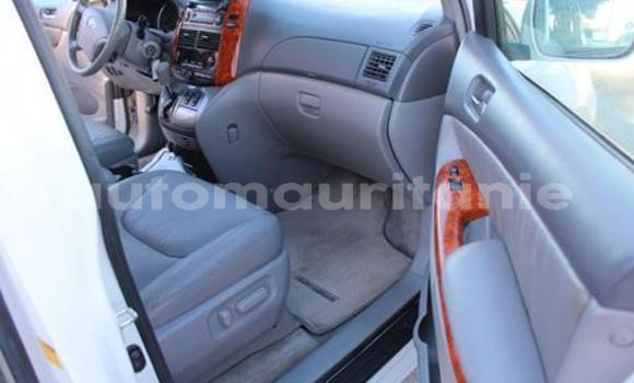 Acheter Occasion Voiture Toyota Sienna Blanc à Adel Bagrou, Hodh ech Chargui
