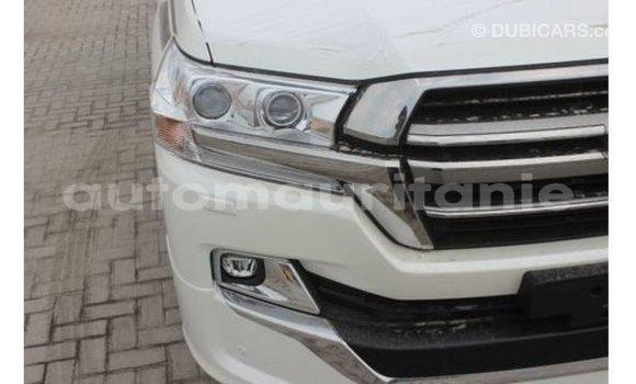 Acheter Importé Voiture Toyota Land Cruiser Blanc à Import - Dubai, Adrar