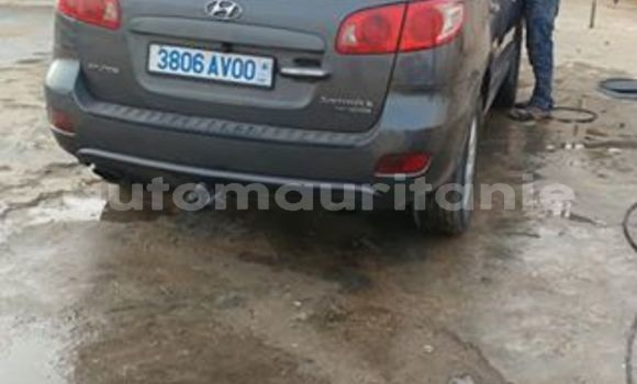 Acheter Occasions Voiture Hyundai Santa Fe Gris à Nouakchott au Nouakchott Ouest