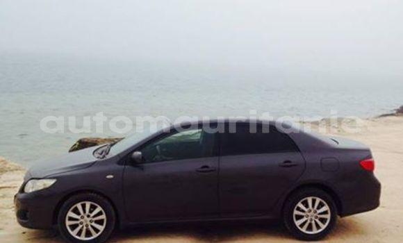 Acheter Occasions Voiture Toyota Corolla Noir à Nouakchott au Nouakchott Ouest
