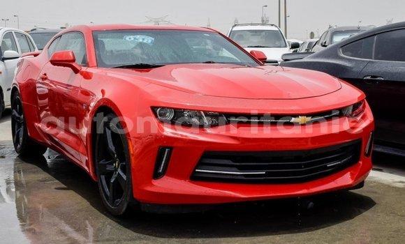Buy Import Chevrolet Camaro Red Car in Import - Dubai in Adrar