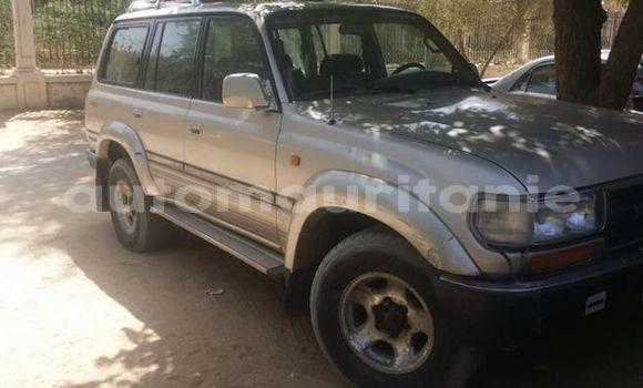 Acheter Occasion Voiture Toyota Land Cruiser Gris à Nouakchott, Nouakchott Ouest