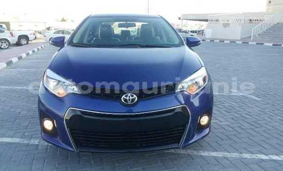 Acheter Occasions Voiture Toyota Corolla Bleu à Nouakchott au Nouakchott Ouest