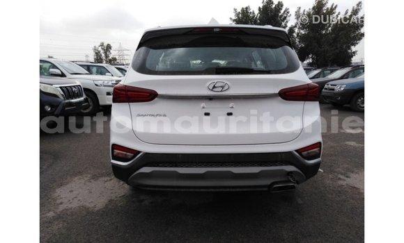 Acheter Importé Voiture Hyundai Santa Fe Blanc à Import - Dubai, Adrar